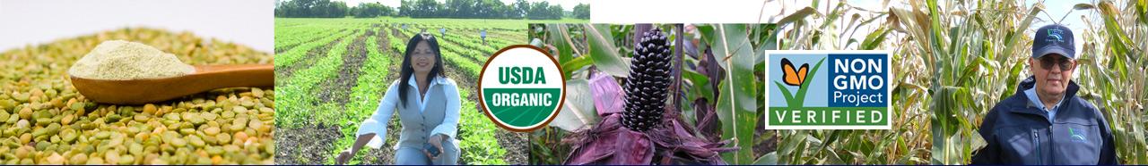 Latin, South America non-GMO products supplier directory